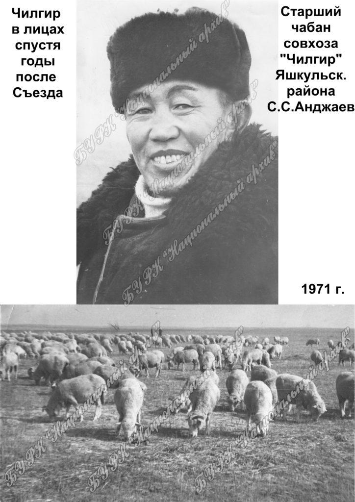 Старший чабан С.С.Анджаев и бараны